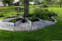 Trädgård inspo