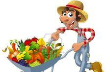 sembrado de frutas y verduras