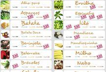 introducao alimentar