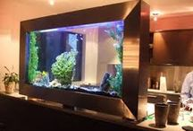 Home Decor - Aquariums / My Hobby! A Must Have For Me.....A Piece of The Ocean Inside My Home! Here are some beautiful ideas! http://www.ClearVisionRealty.com