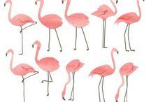 flamant rose déco / Le flamant rose dans la déco, entre un esprit Miami Beach et kitsch !! Le décorateur vous guide pour l'intégrer a votre logement.Découvrez nos projets: http://www.e-interiorconcept.com