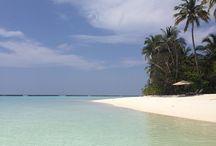 Maledivy / Fotogalerie souostroví Maledivy.