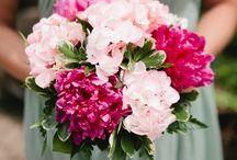 Sage, Lilac and Fuchsia Wedding