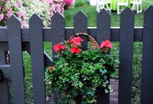 Picket fencing ideas