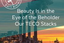 Apollo Beach: TECO Stacks / The most familiar landmark in South Shore, Florida. The TECO Stacks. An edited interview with Ron Bishop, Director of the Big Bend Power Plant for Tampa Electric Company (TECO)