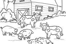 Zvířata Z Farmy