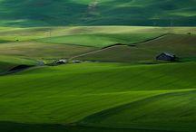 Landscape / by Santiago Nuñez O