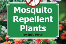 Mosquito repelling