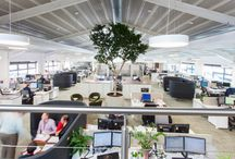 Biophilia in the Workplace / Biophilic design in offices and workspaces. Creating employee well being through natural elements. We love incorporating biophilic design into our creations http://www.interaction.uk.com