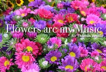 Garden Quotes / by Plant Care Today