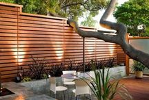 Privacy in the garden