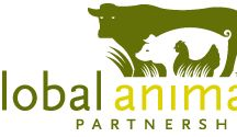 Animal Welfare / Awareness and welfare