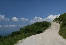 Route 286 / Netwerken Anno Nu