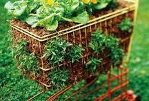 PEN Gardening