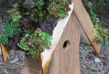 Birdhouse/planters