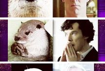 Benedict cumberbatch for ever and ever❤