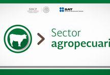 Devolución de IVA para sector agropecuario / Implementamos una serie de mejoras para apoyar más fácil y más rápido, al sector agropecuario.