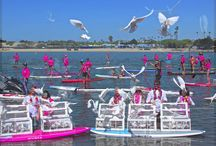 Stand Up For The Cure / Stand Up For The Cure at Newport Dunes by Newport Coast White Dove Release