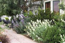 Outdoor Space / by Nicole Andrus