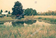 PhotoManiX Digital on ShutterStock