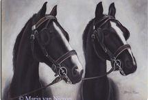 Horses - Art and Animals - Dieren en Kunst / Horses - Art and Animals - Dieren en Kunst