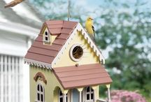 Birdhouses & Fountains / by Diana Brown-Meyer