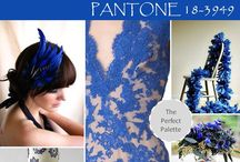 Dazzling Blue Wedding Flowers / Pantone 18-3949, Dazzling Blue for 2014 Brides!