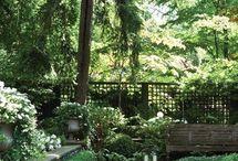 Inspiring back garden