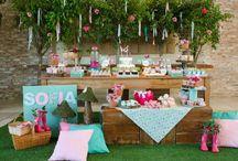 Fiesta picnic