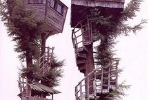 Trees - Houses & Climbing / Climbing and Adventuring in Trees!