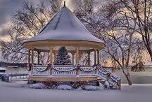 Christmas / by John D'Amico