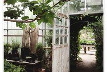 Garden / ...