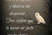 Frases / by Bertha Torres