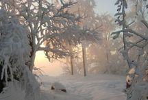 The wonders of winter