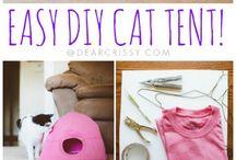 Tenda per gatto