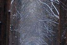 Aqua Sentier couvert neige