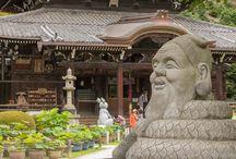 Mimuroto-ji: Magnificent Flower Display in Uji City!
