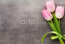 Quadri Primavera / Idee di primavera