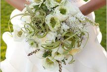 LBE / Melinda + Jim / A botanical themed wedding.