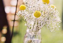 svadba kvety