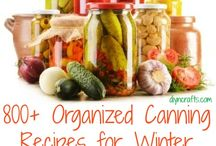 Canning / by Megan Smith