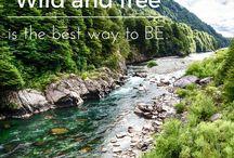 patagoniatripplanner.com / #traveltoconserv