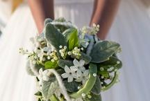 Bridal bouquets (shot by me)