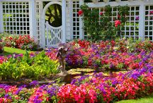 Our Favourite Gardens / Take a look at some of the most famous and beautiful gardens around the world!