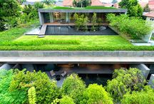 Say no to naked roofs! / Cover up your building's nakedness by dressing it with vegetation, and enjoy bringing nature to the urban landscape - or taking the urban landscape to nature.