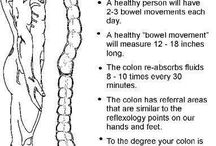 Colon health and must!!!