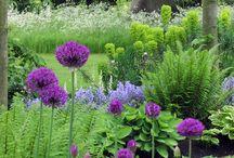 Gardening Divine