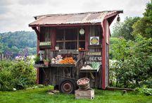 Farmstands / by Liza Garibaldi