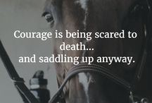 Heste citater