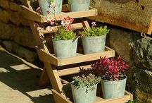 Flowers For Your Perfect Garden / Thinking of giving your garden a makeover to make it look pretty and colourful? See some designs of flower beds, hanging baskets and potted plants etc.